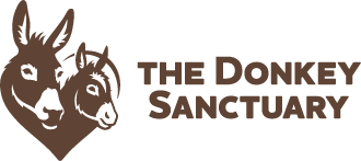The Donkey Sanctuary Weekly Lottery logo
